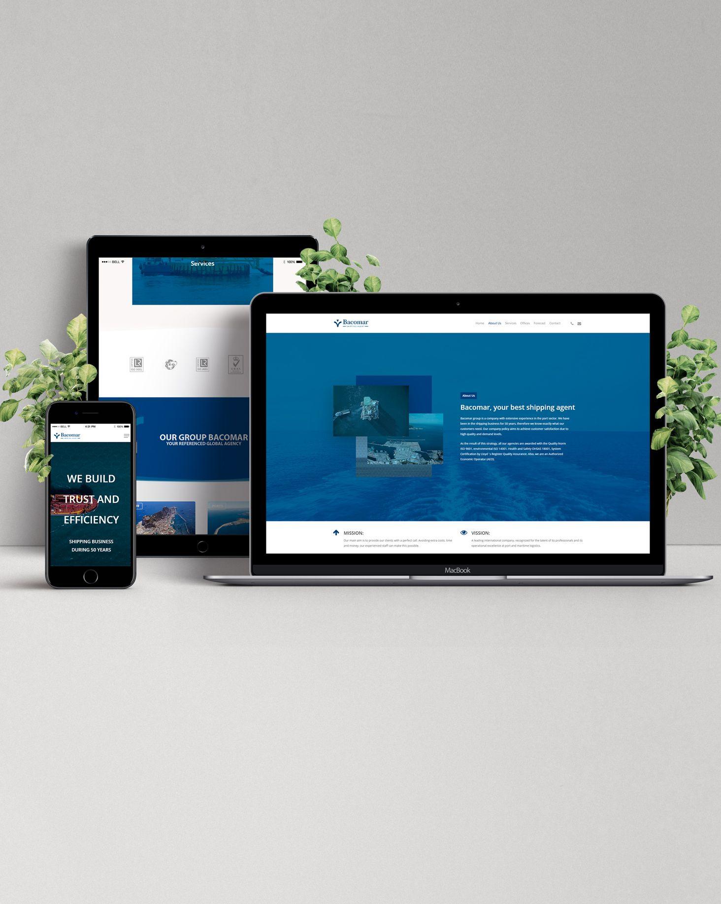 Diseño Web Bacomar