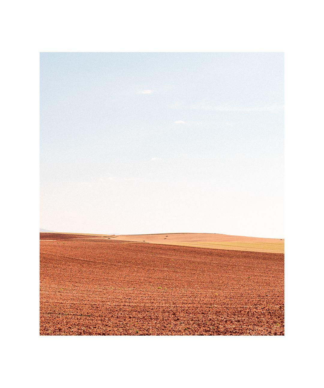 La tierra amarilla